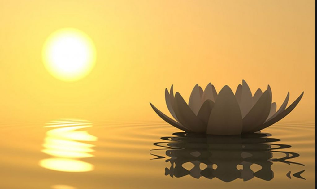 Weekly Sunday Meditation